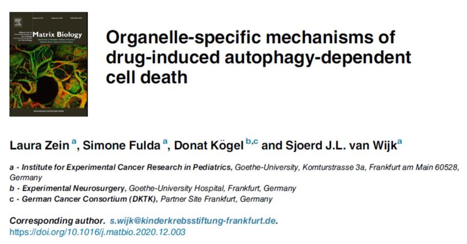 Autophagy cell death SFB1177 Laura Zein Sjoerd van Wijk