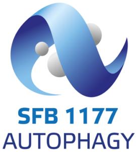 Autophagy SFB1177 Sjoerd van Wijk